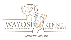 Kennel Wayosi Mobile Logo