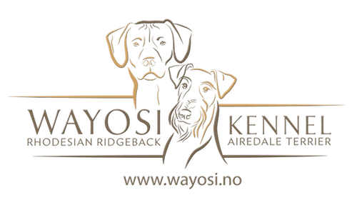 Kennel Wayosi Sticky Logo Retina
